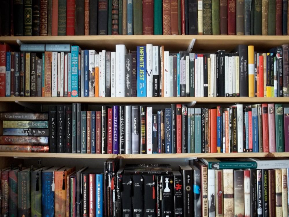 A Bookshelf of Organized Chaos