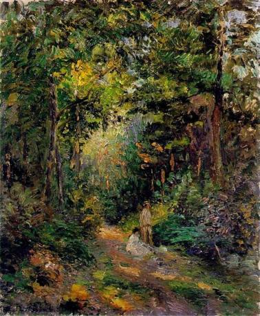 autumn-path-through-the-woods-1876.jpg!Large