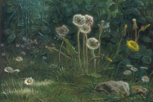dandelions-1868.jpg!Large