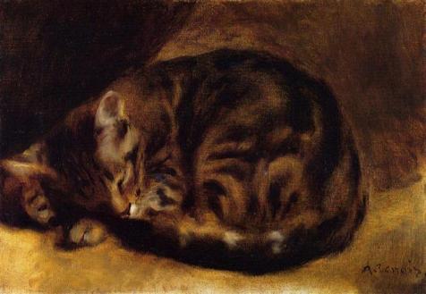 sleeping-cat-1862.jpg!Large
