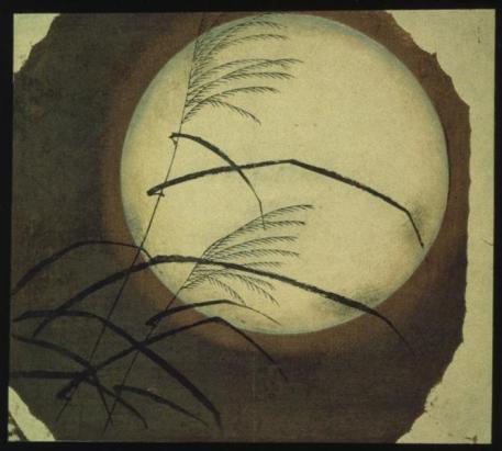 wind-blown-grass-across-the-moon.jpg!Large